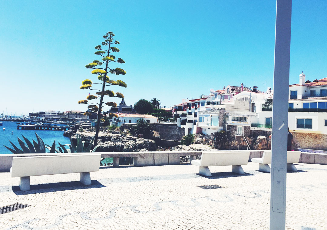 soophisticated_Portugal3